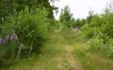 Banvallen efter Brömsebro 2008-07-09