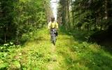 Banvallen genom skogen från Fryksta 2013-06-21