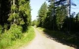 Banvallen mellan Axvall och Skara 2010-07-07