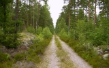 Banvallen mellan Grönlid och Allgunnen 2007-07-06
