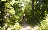 Banvallen mellan Högaskog och Kålhester 2008-07-03