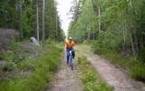 Banvallen mellan Knivingaryd och Vackerslätt 2007-07-11