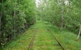 Banvallen mellan Midskog och Siggaryd 2019-06-09