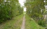 Banvallen mellan Skogsby och Färjestaden 2010-09-30