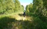 Banvallen norr om Vittaryd 2013-07-20