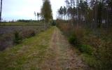 Banvallen söder om Älmeboda 2013-10-06