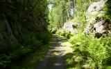 Banvallen söder om Gusum 2011-06-28