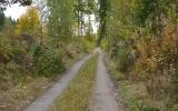 Banvallen söder om Yxnanäs 2013-10-06