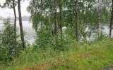 Banvallen vid Långasjö 2019-06-12