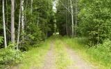Banvallen vid Torhult, avskuren vid riksvg 40, 2008-06-27