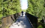 Bro över Alsterån vid Alstermo 2007-07-02