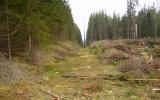 Elstolpar mitt i banvallen söder om Eringsboda 2008-05-01