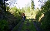 Ganska dålig banvall strax söder om Högaskog 2008-07-03