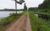 Järnvägsbank vid Hösjöheden 2017-06-10