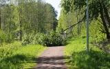 Nedfallet träd över banvallen 2019-06-02