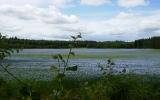 På håll såg detta ut som en sjö, men kartan visade på en åker, 2010-07-06
