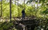 Rester av bro vid Ålshult 2008-08-30