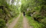 Skärning mellan Hällerum och Vassemåla 2012-05-26