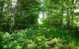 Spåret mellan Glimminge och Broby 2013-07-08