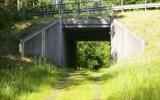Viadukt under landsvägen vid Immeln 2009-06-22